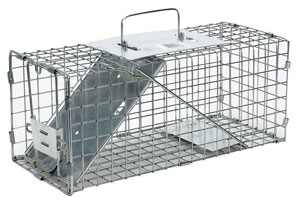 squirrel trap reviews