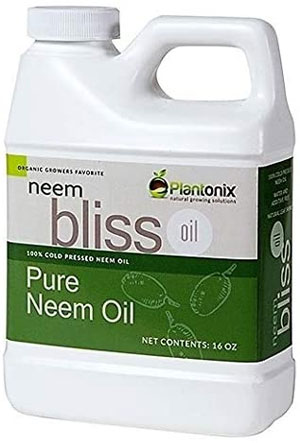 neem oil soil soak